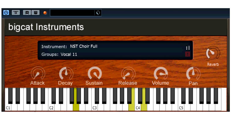NST Vocal By bigcat Instruments